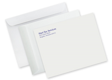 "9"" x 12"" Mailing Envelope - Full Color"