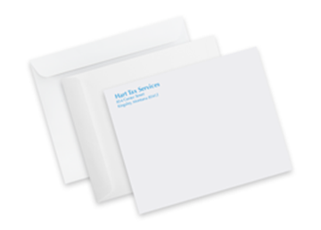 "6"" x 9"" Mailing Envelopes - Spot Color"