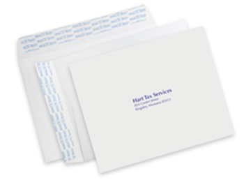 "9"" x 12"" Mailing Envelope - Spot Color"